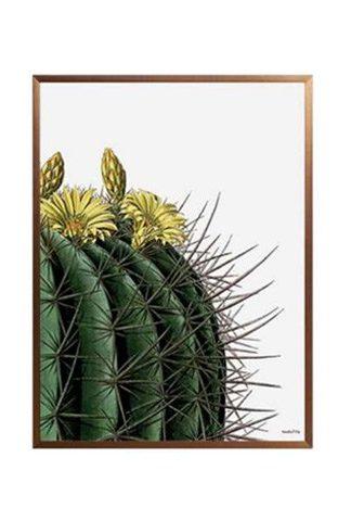 poster cactus fiori gialli con cornice bronzo 20x25 peccati veniali