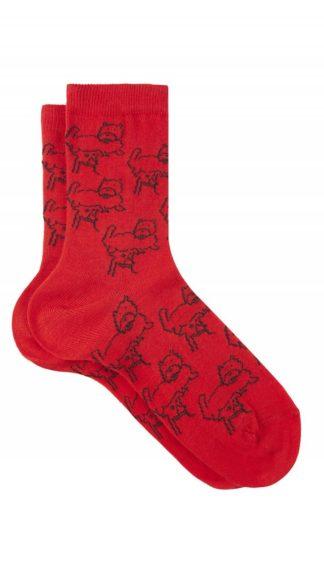 calzini cani rossi peccati veniali